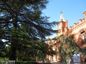 cedro frente a palacio